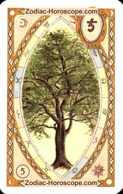The tree, monthly Love and Health horoscope July Aries