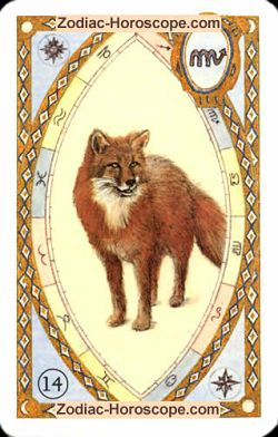 The fox, monthly Love and Health horoscope July Aries