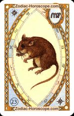 The mice astrological Lenormand Tarot