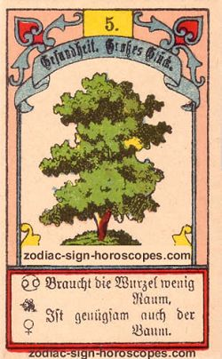 The tree, monthly Aries horoscope July