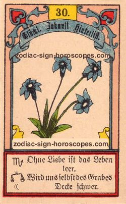 The lily antique Lenormand Tarot